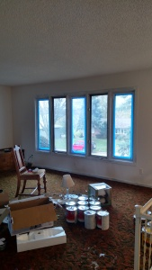 diy stained plywood before